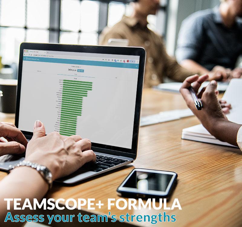 teamscope strengths tool digital
