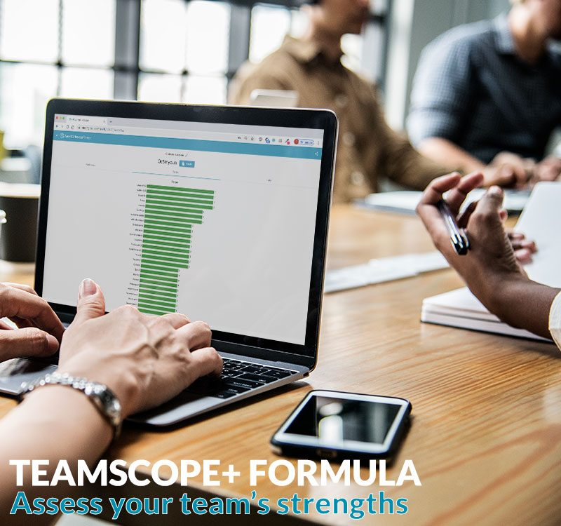 teamscope strengths tool digital