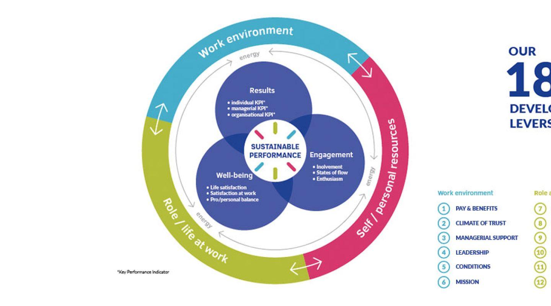 positive organisational profile